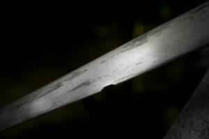 fengbao kung fu history geschichte wissenswertes mini lecture schwert doppelmesser hu die dao wu dip dou klinge quer