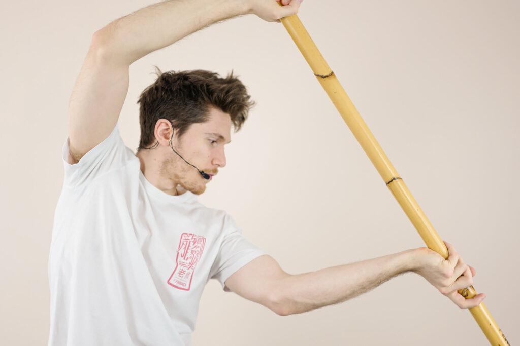 fengbao kung fu langstock technik online livestream lernen blog