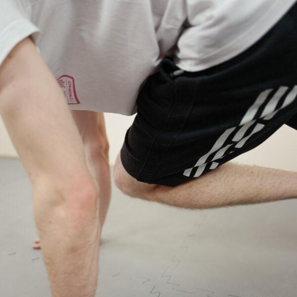 fengbao kung fu wien online livestream liegestuetz quadrat