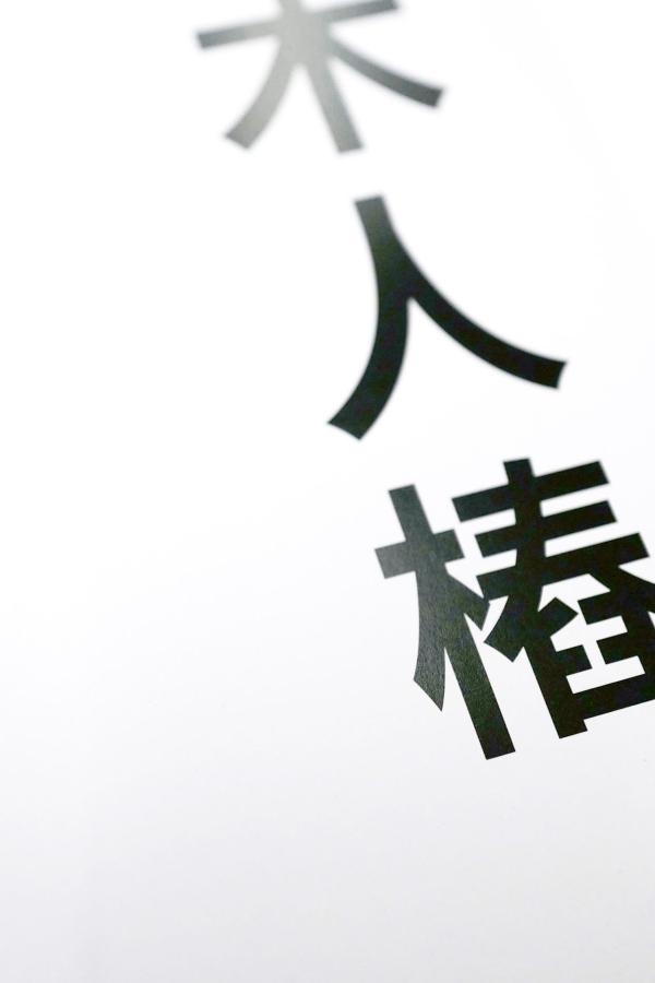 fengbao skriptum holzpuppe konzepte kung fu kampfkunst nahaufnahme