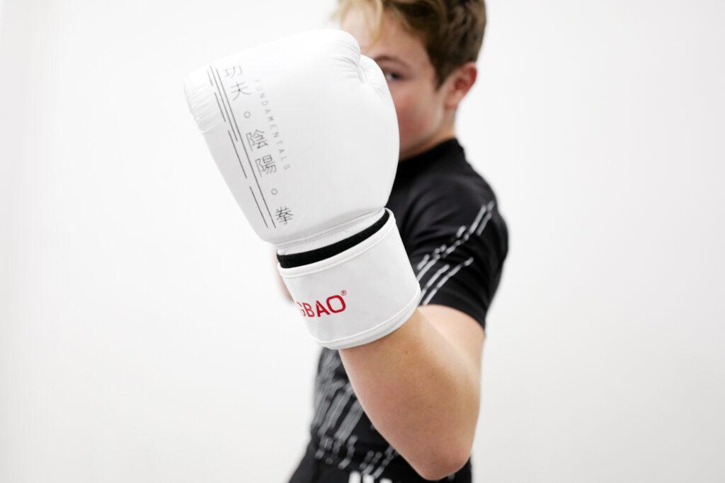 fengbao fundamentals boxhandschuhe 14oz boxing gloves kung fu 1080 shop
