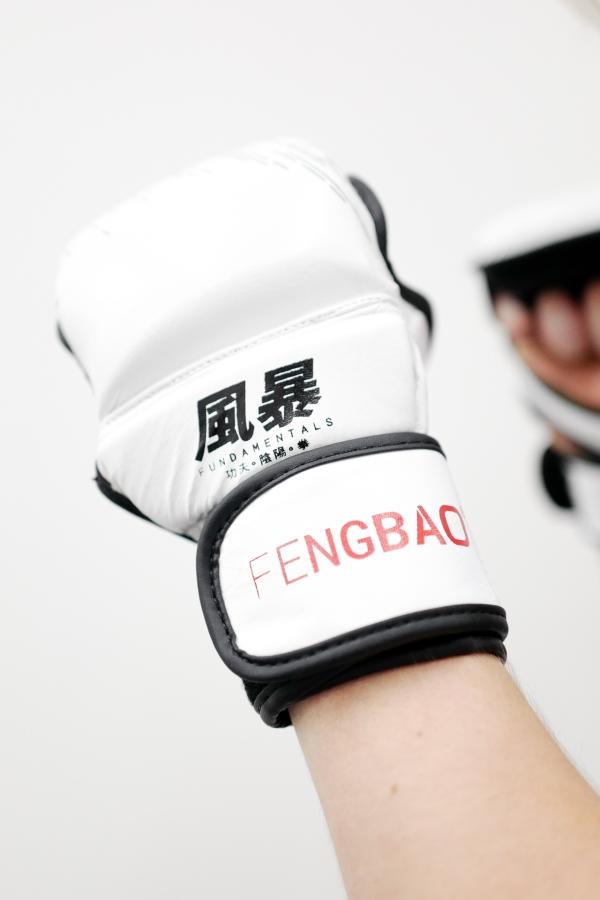 grappling thaiboxen kicking striking fengbao 1080 shop mma handschuhe squashed