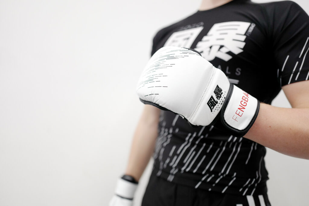 kampfkunst kampfsport shop 1080 wien mma handschuhe boxing gloves fengbao