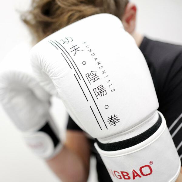 kickboxen kampfsport boxen 14oz boxhandschuhe thaiboxen 1080 shop fengbao squashed