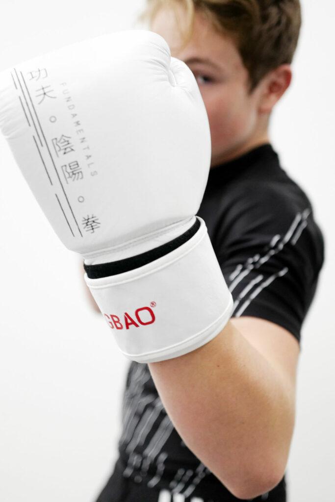 boxhandschuhe 14oz fengbao kung fu kampfsport fundamentals 1080 wien
